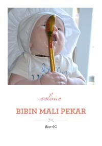 Bibin mali pekar