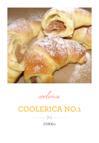 coolerica no.1