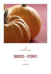 BRZO - FINO