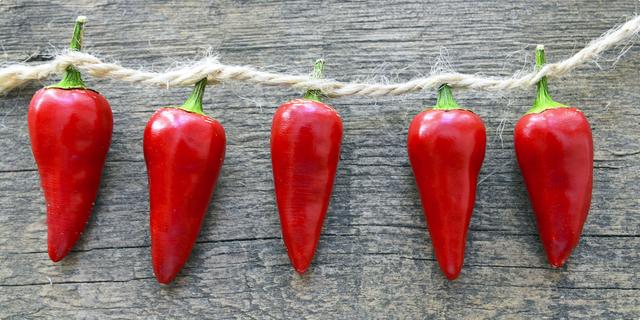 Slatka paprika