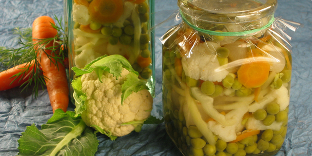 Salata od kiselog miješanog povrća