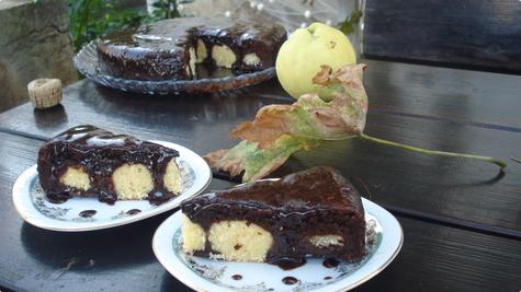 Sirne loptice u čokoladnom biskvitu