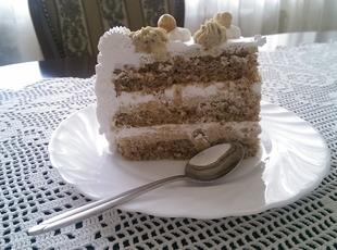 Slikovni rezultat za PLAZMA - LEŠNIK TORTA
