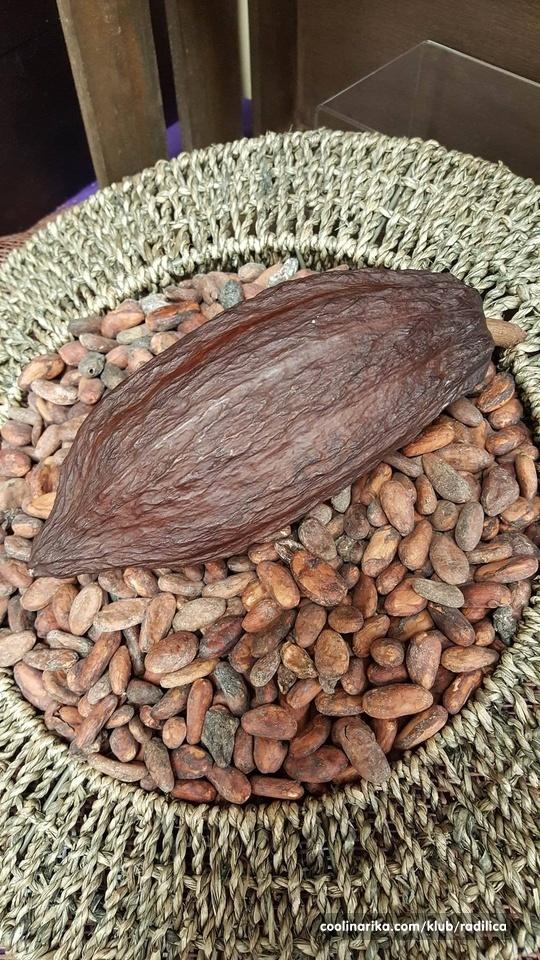 Od zrna do savršene sreće (Bean to Bliss)