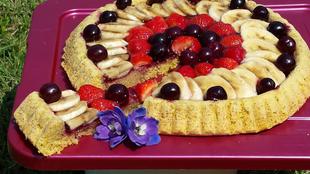 Voćna torta s integralnim biskvitom