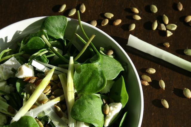 Fina salata od potočarke - Nocturna