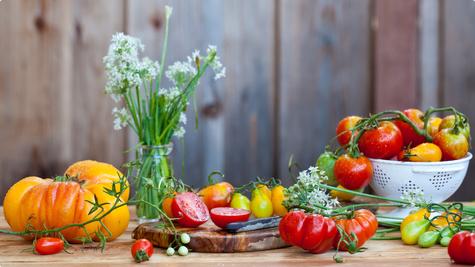 Carica rajčica