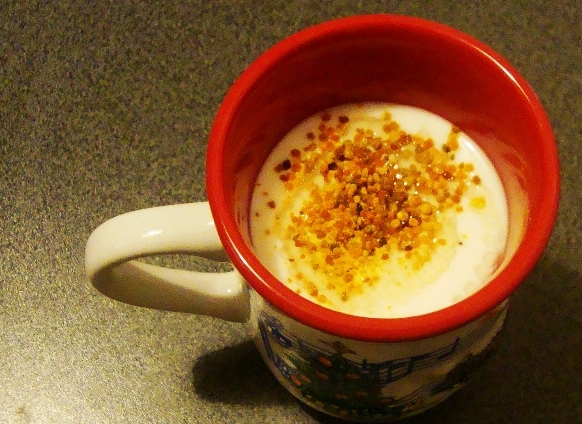 Jogurt sa medom i cvjetnim prahom - KarmelaK