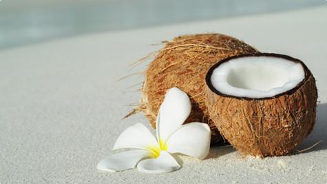 Egzotični kokos