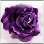 PurpleVelvet