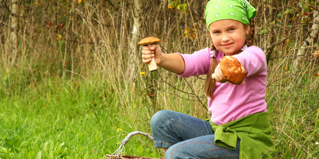 Gljive u prehrani djece
