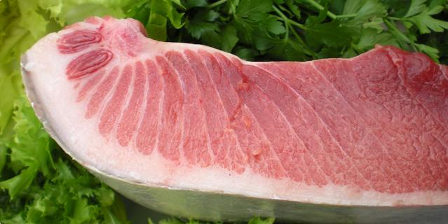 Svježa tuna - što češće na stolu!