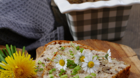 cottage cheese and walnut loaf - dusa79