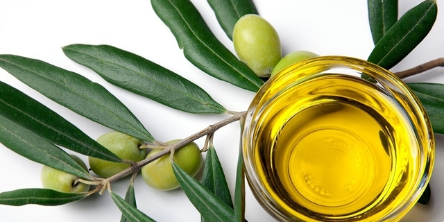 Kako odabrati kvalitetno maslinovo ulje_Coolinarika