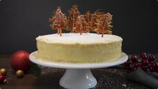Blagdanska zimska torta