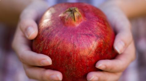Jabuka prepuna koštica